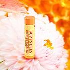 美国 Burt's Bees小蜜蜂蜂蜜润唇膏 保湿滋润唇膏4.25g/支  宝宝妈妈都可用