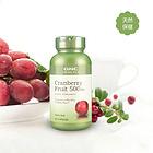直邮 美国GNC健安喜 蔓越莓精华胶囊500mg 酸果蔓 天然防护泌尿系统保健品  100粒/瓶