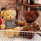 毛衣泰迪熊毛绒玩具送女友儿童礼物 棕/咖啡两色 任选